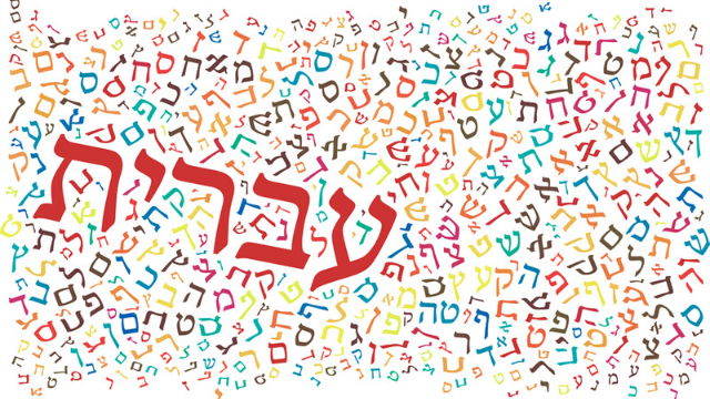פלא העברית - שיחה מרעננת ומפתיעה על ייחודה של העברית