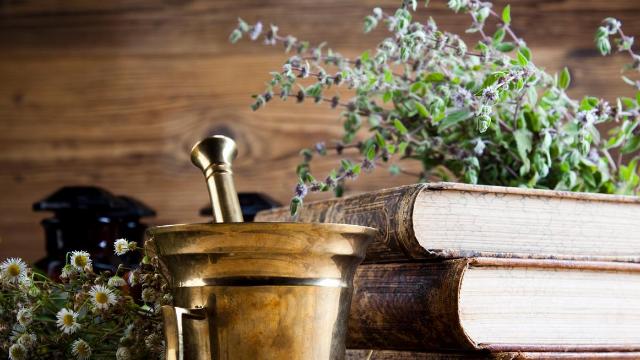 צמחי מרפא בתנך ובמסורות ישראל
