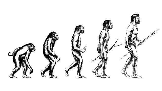 אקולוגיה של החי והצומח בעולם - על אבולוציה, מוצא האדם ומה שביניהם מאז ועד היום...