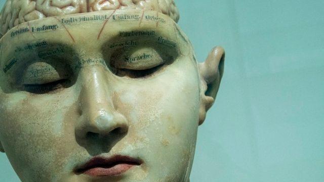 אורח חיים המשפיע על בריאות המוח